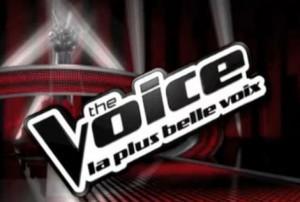 """Beaux profits pour TF1 avec les SMS de """"thé Voice"""""""